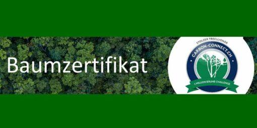 Treellionär-Zertifikat